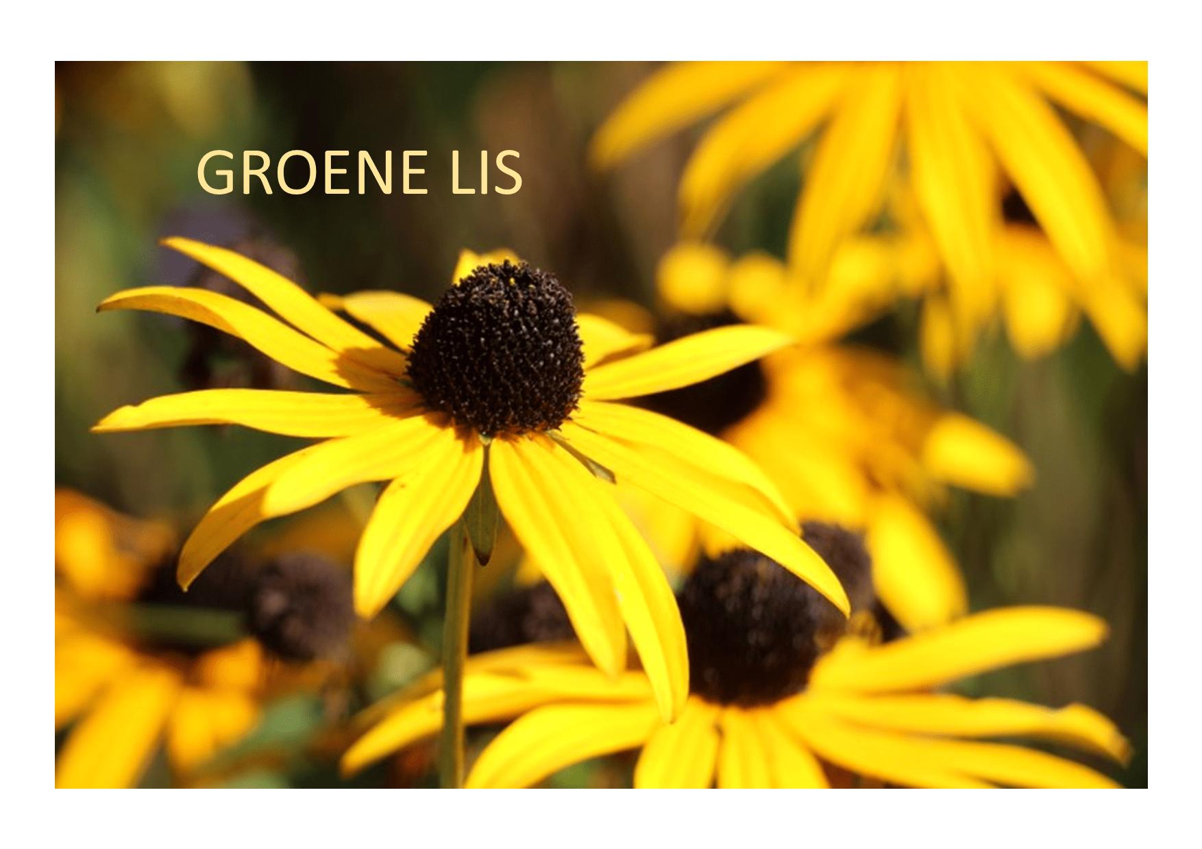 Hoofdfoto Groene Lis
