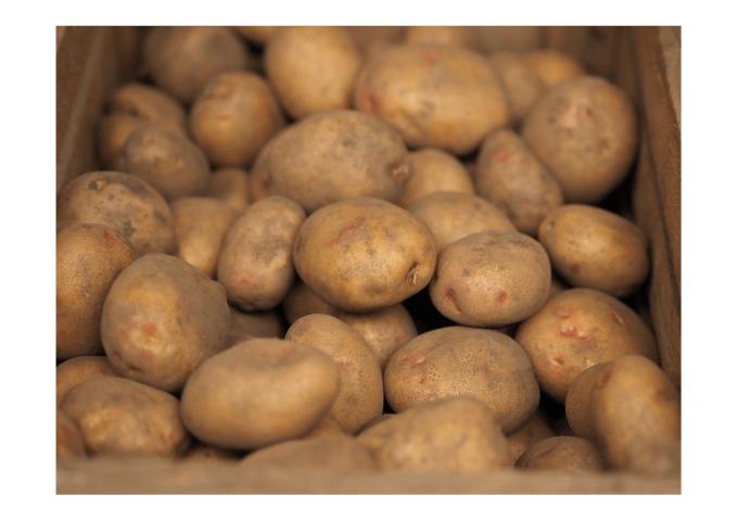 Dockx aardappelautomaat