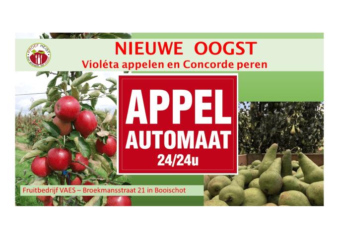 Nieuwe oogst Vaes appelen en peren