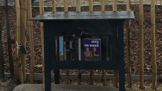 Duurzame Heistenaars boekenruilkastje Wiekevorst