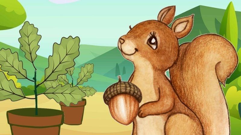 Een boompje van Frits de eekhoorn